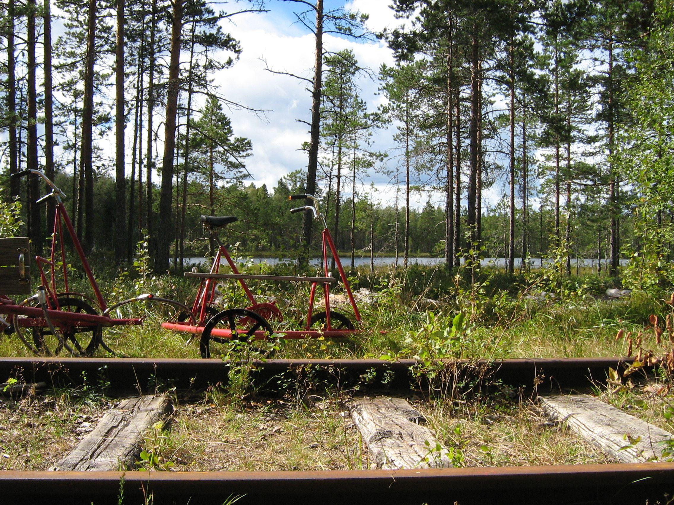 Annika Jonsson, Dressin i Dalasågen