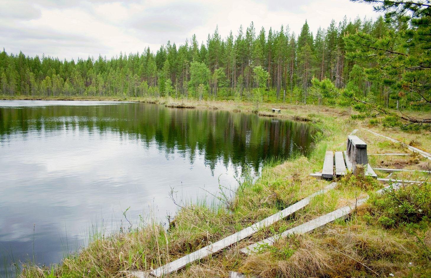 Malin Hedman,  © Malå kommun, Stentjärn