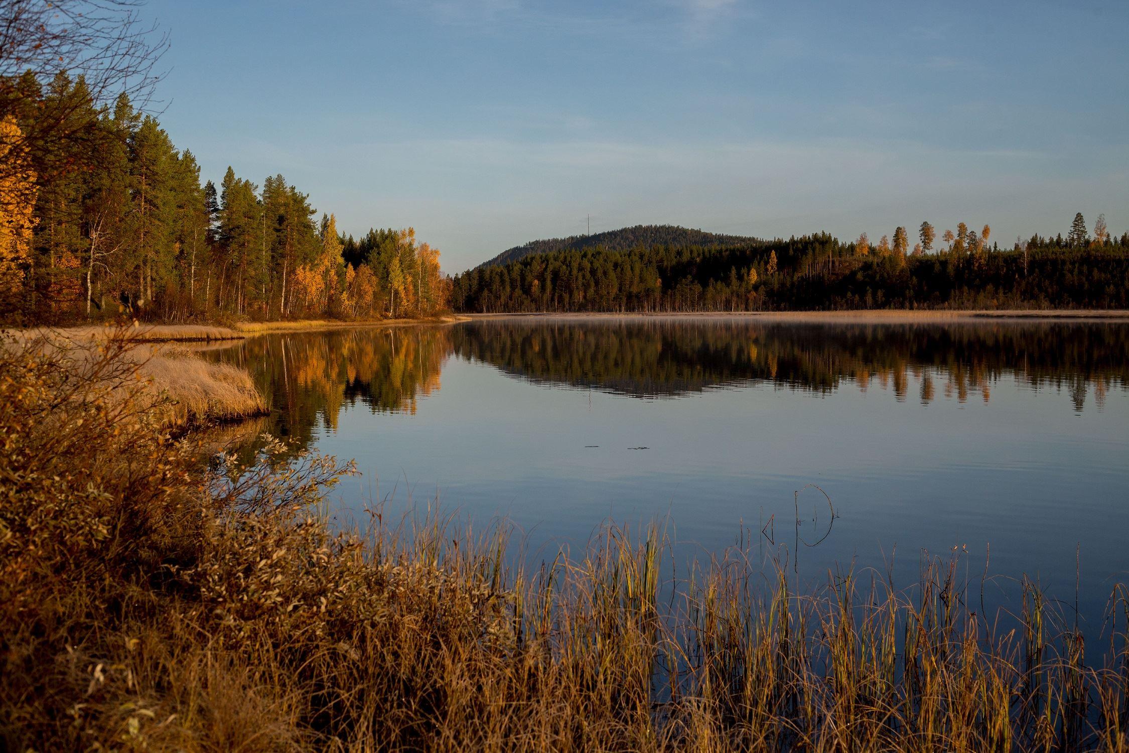www.ricke.se,  © Malå kommun, Kanotled Skäppträskån