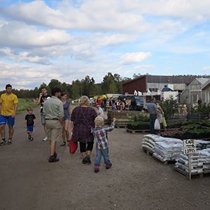 Höstmarknad / Skördefest på Trädgår'n i Bygdeå