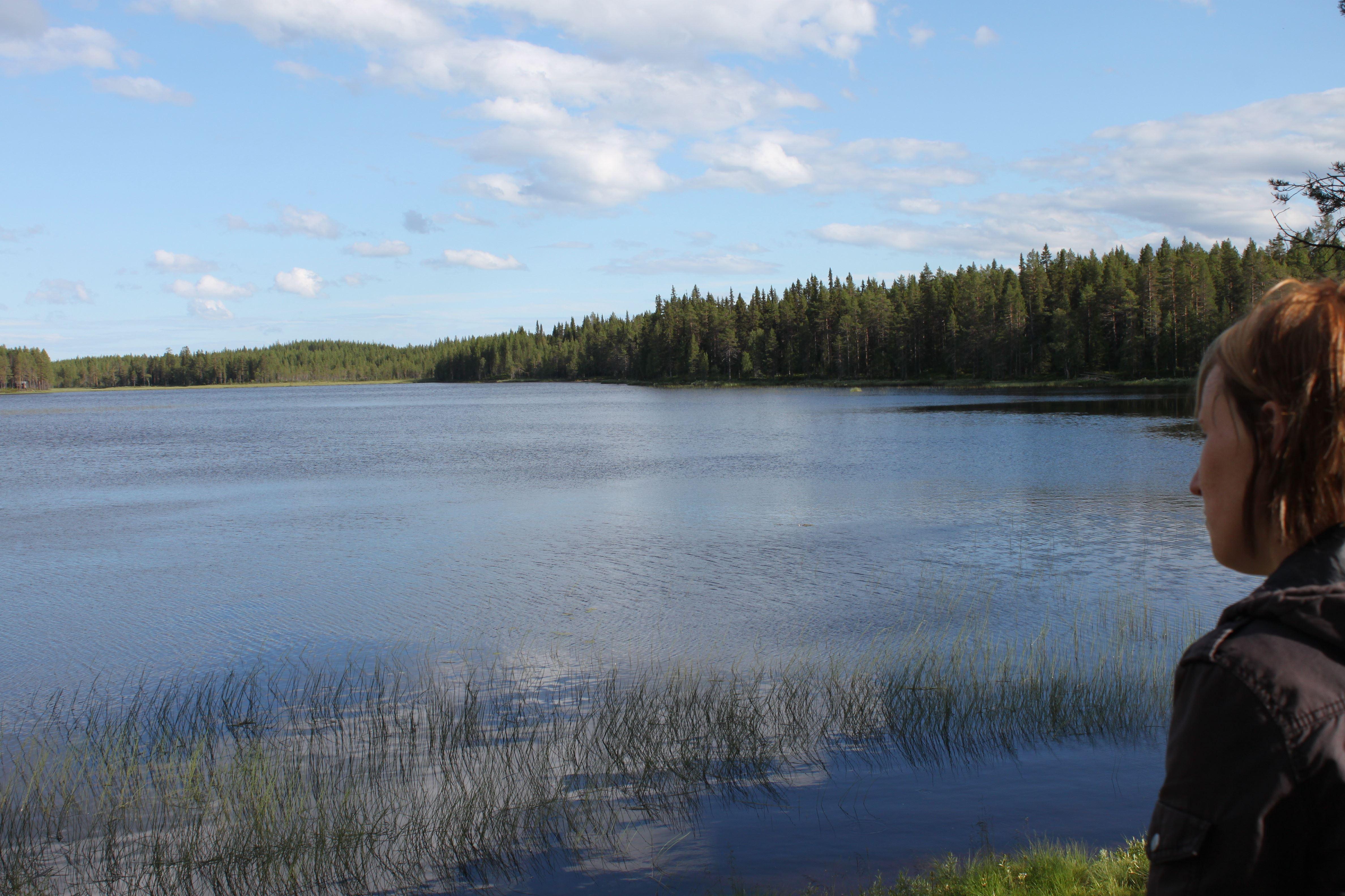 © Malå kommun, Koppsele