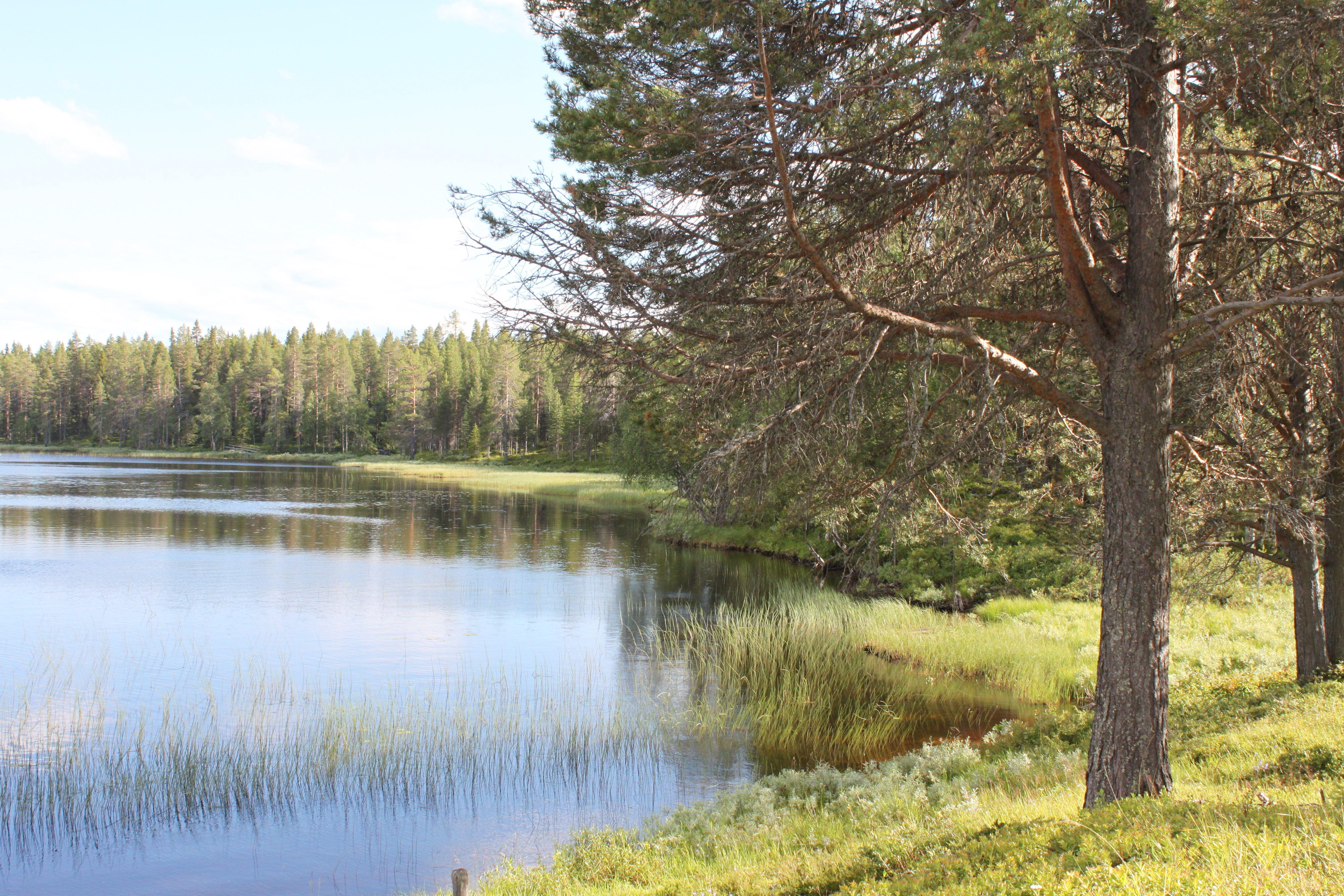 © Malå kommun, Kanotled Malån