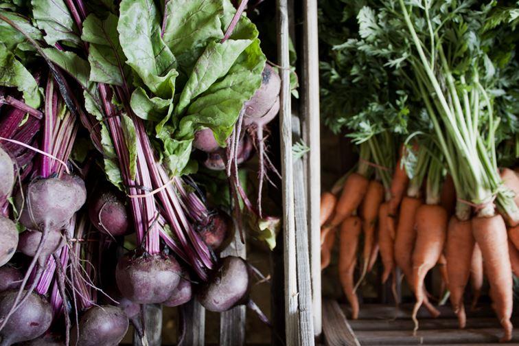 Økologisk Høstmarked, Rörum