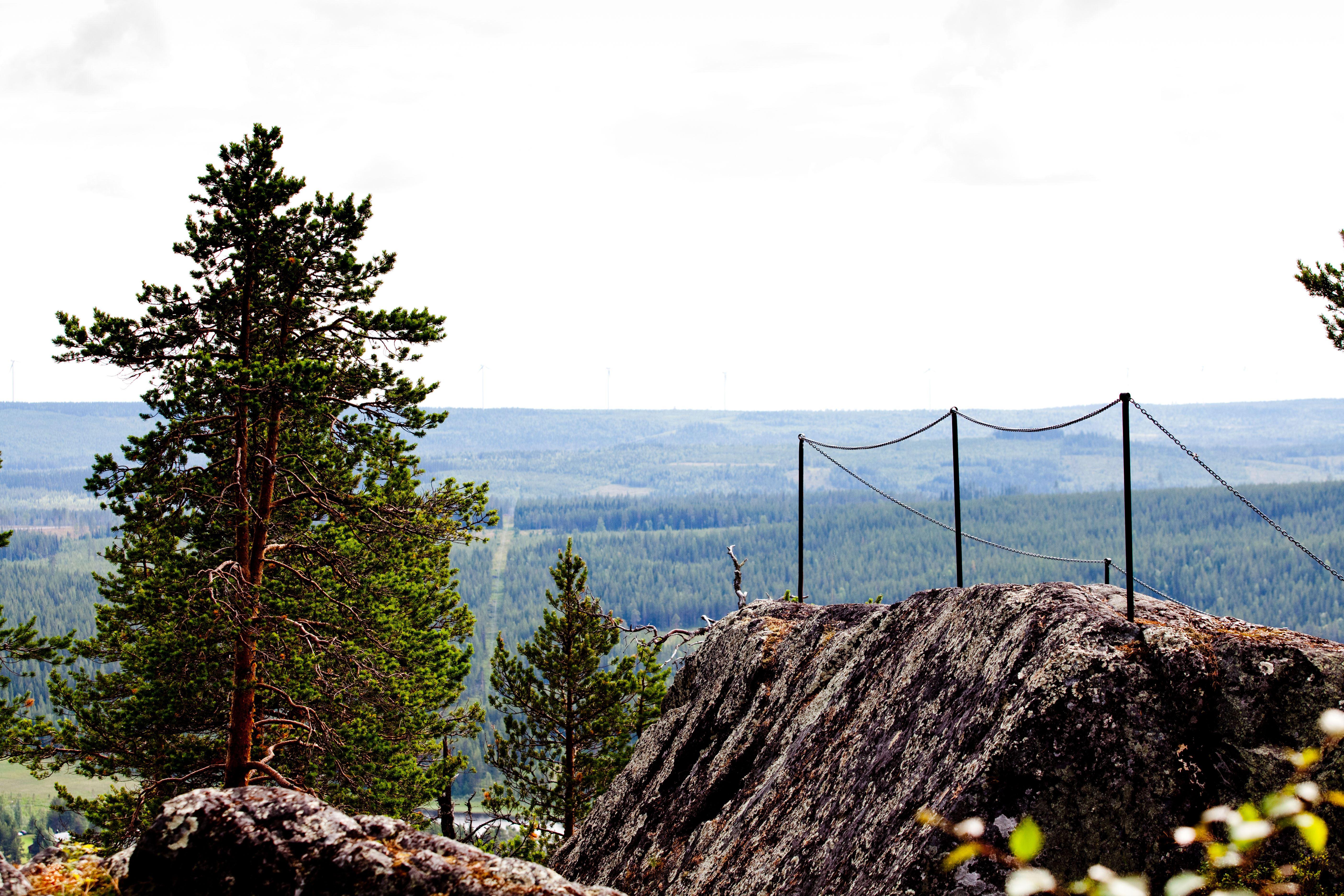 www.ricke.nu,  © Malå kommun, Ättestupan