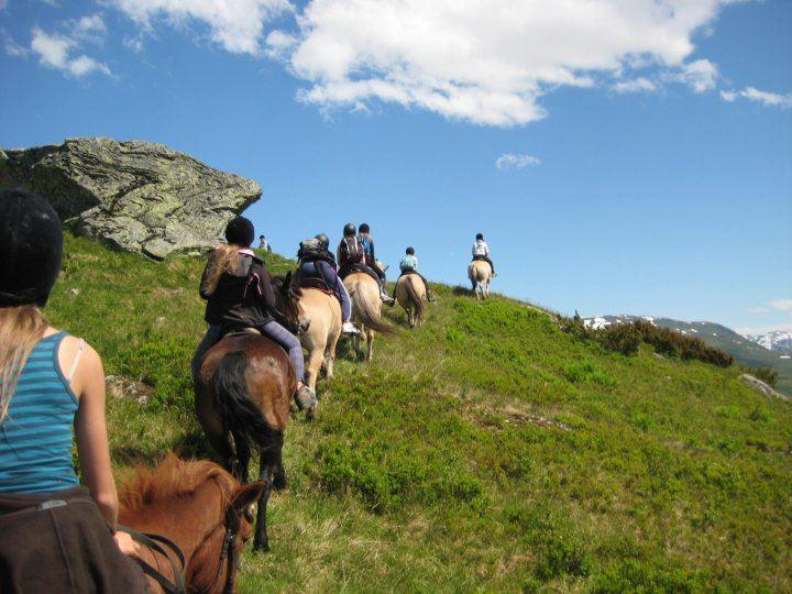 Myrkdalen Hestesenter
