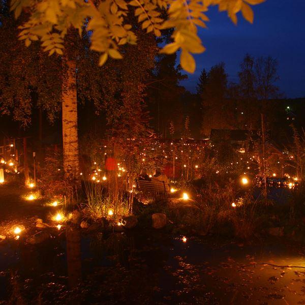 Ljuskvällar i Bäsna Trädgård