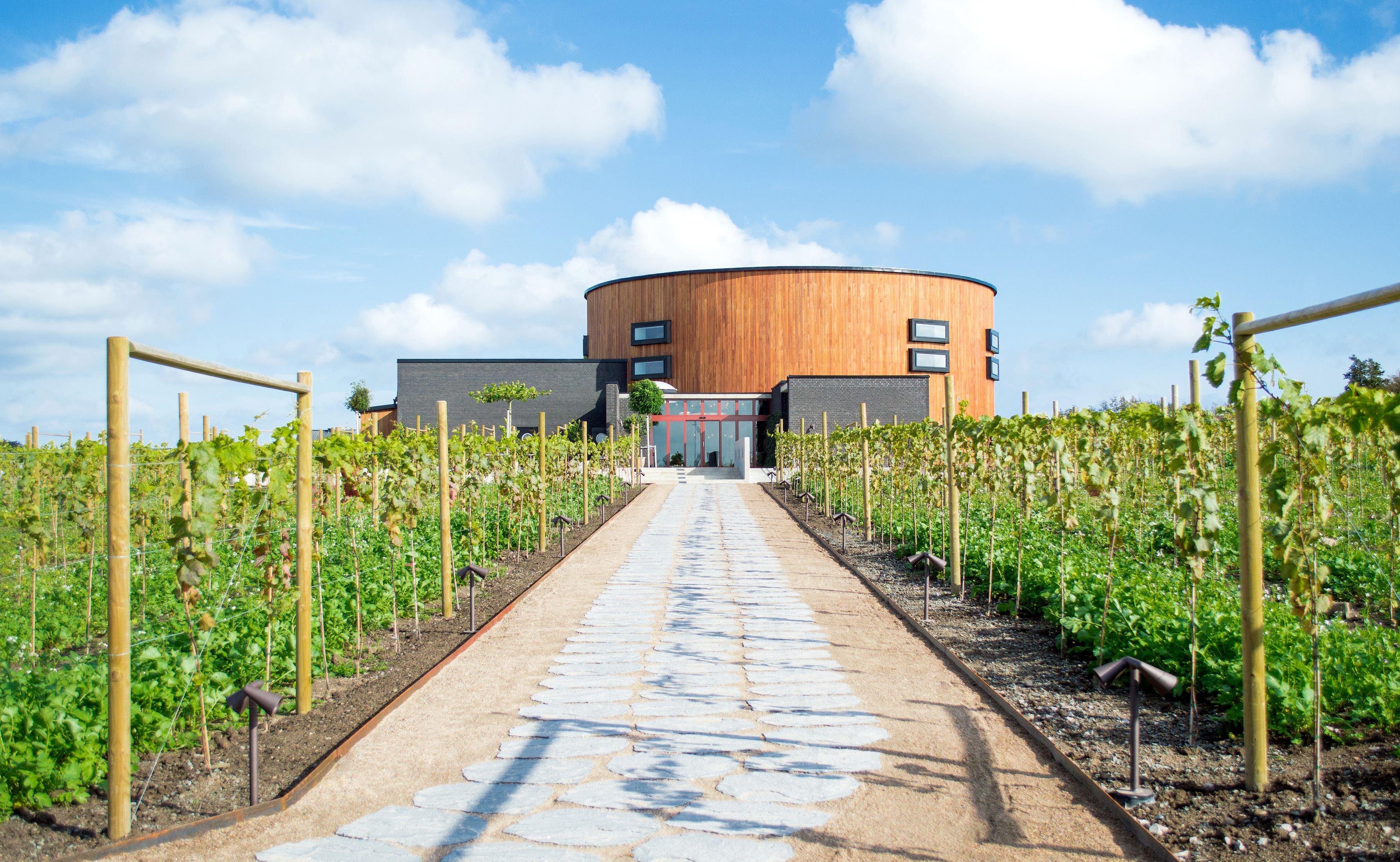 Guidade turer i Nordens största vineri – från druva till vin!