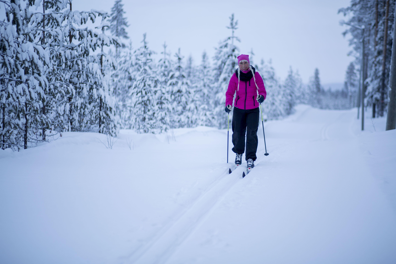 www.ricke.se,  © Malå kommun, Skidspår - Tjamstans fritidsområde