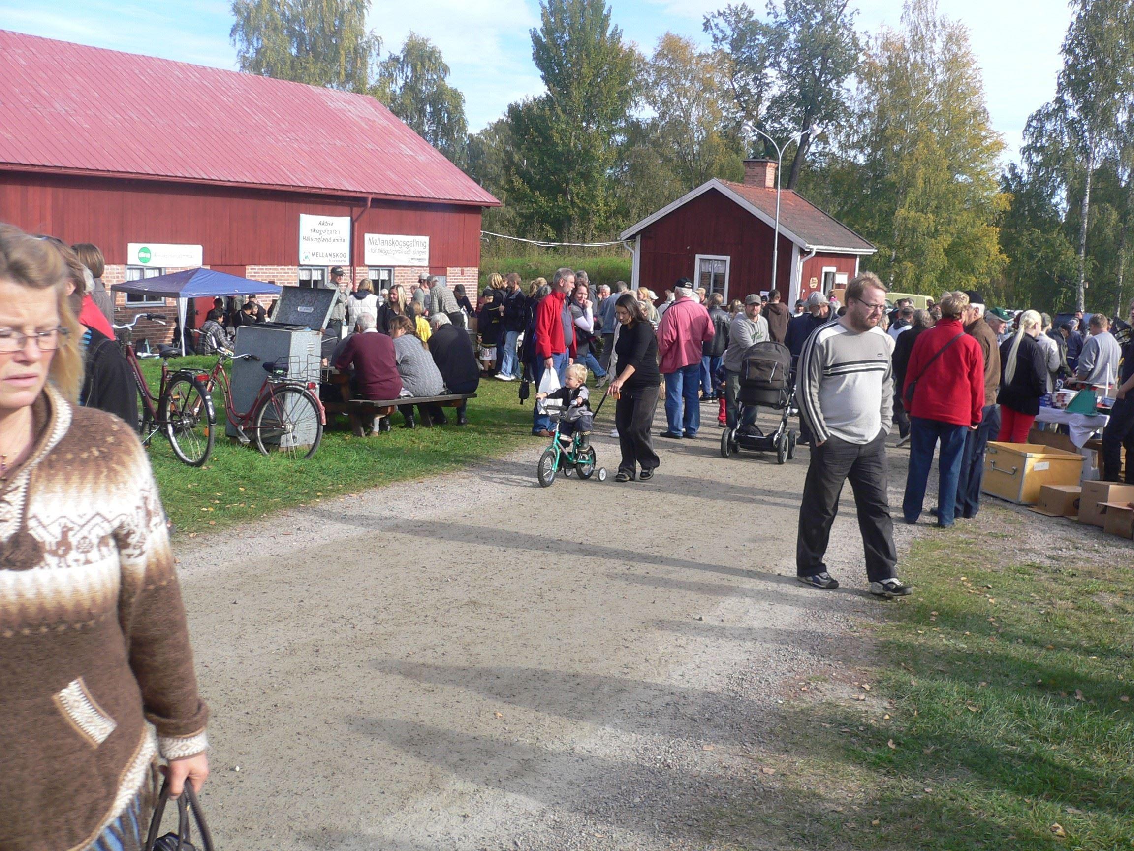 Mickelsmäss Höstmarknad - Delsbo Lantbruksmuseum