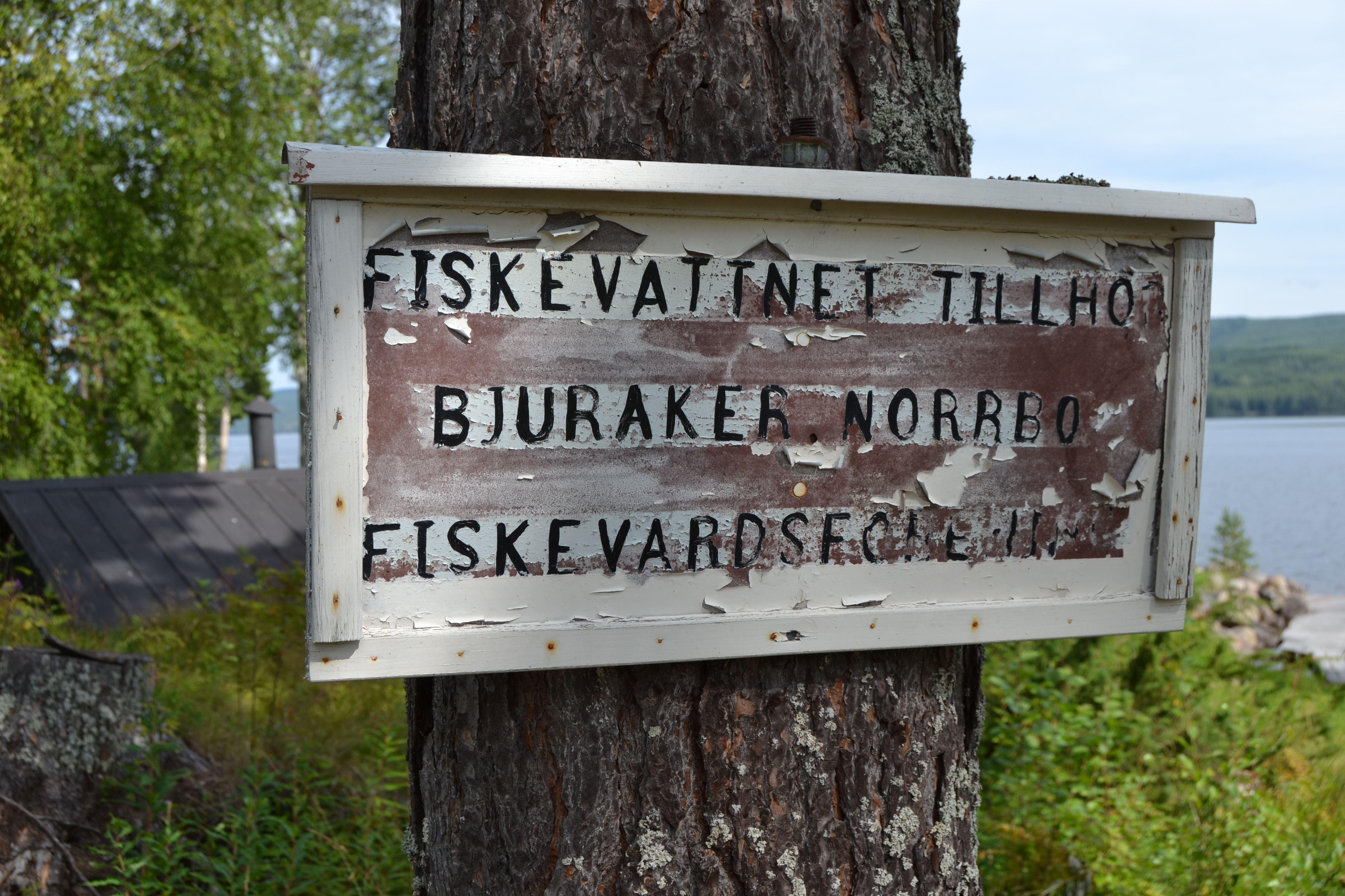 Malin Löthmyr,  © Visit Glada Hudik, Bjuråker-Norrbo fiskevårdsområde