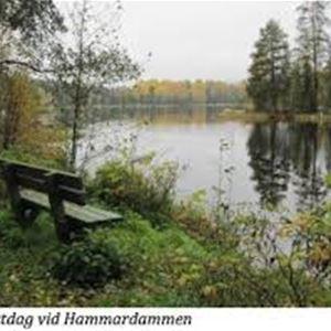 Hammardammen, Vattenverket, Hofors