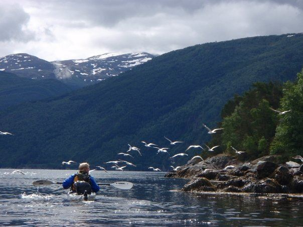 Sea Kayaking in Flåm