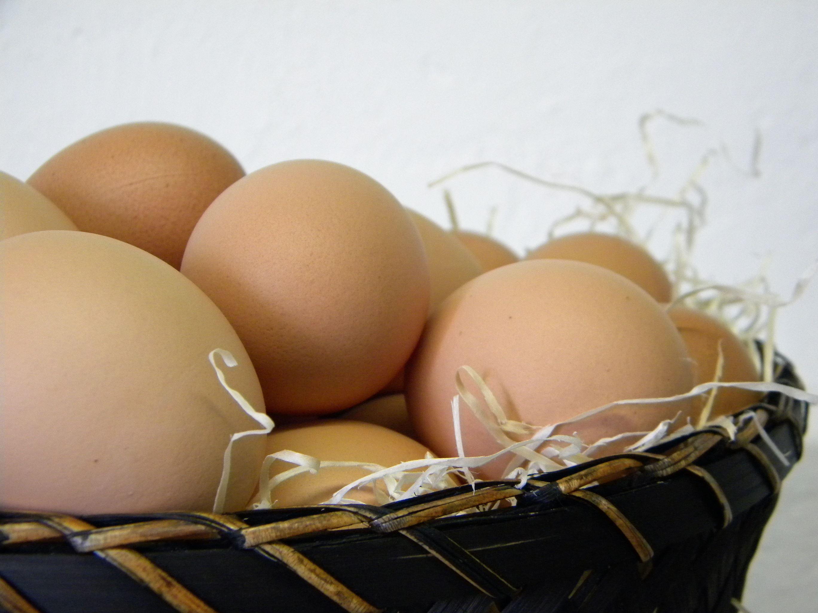 Ägg, Skåne, Gårdsbutik