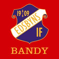 Bandy i Edsbyn
