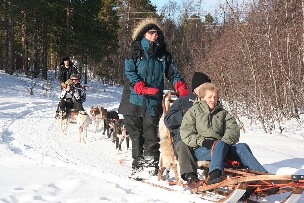 15 Km Morning Dogsled Tour