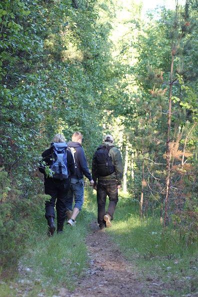 Myckelberget & Torrberget - Vandringled
