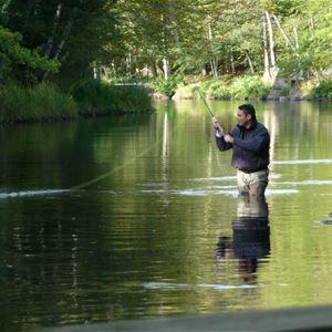Fishing season starts in Mörrum