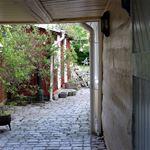 Bakgårdars charm i södra kvarteren - del 2