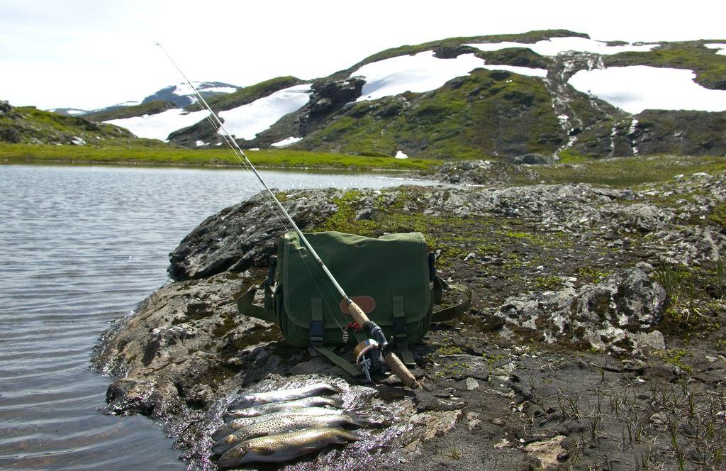 Photo: Sturle Nepstad, Fishing