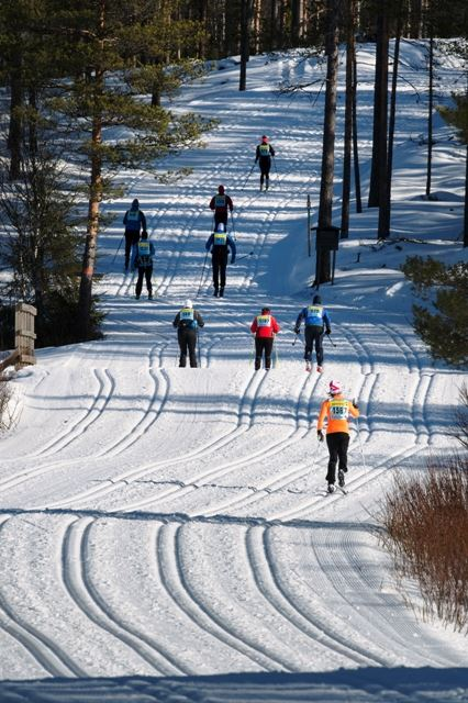 KortVasan -  Cross Country Ski