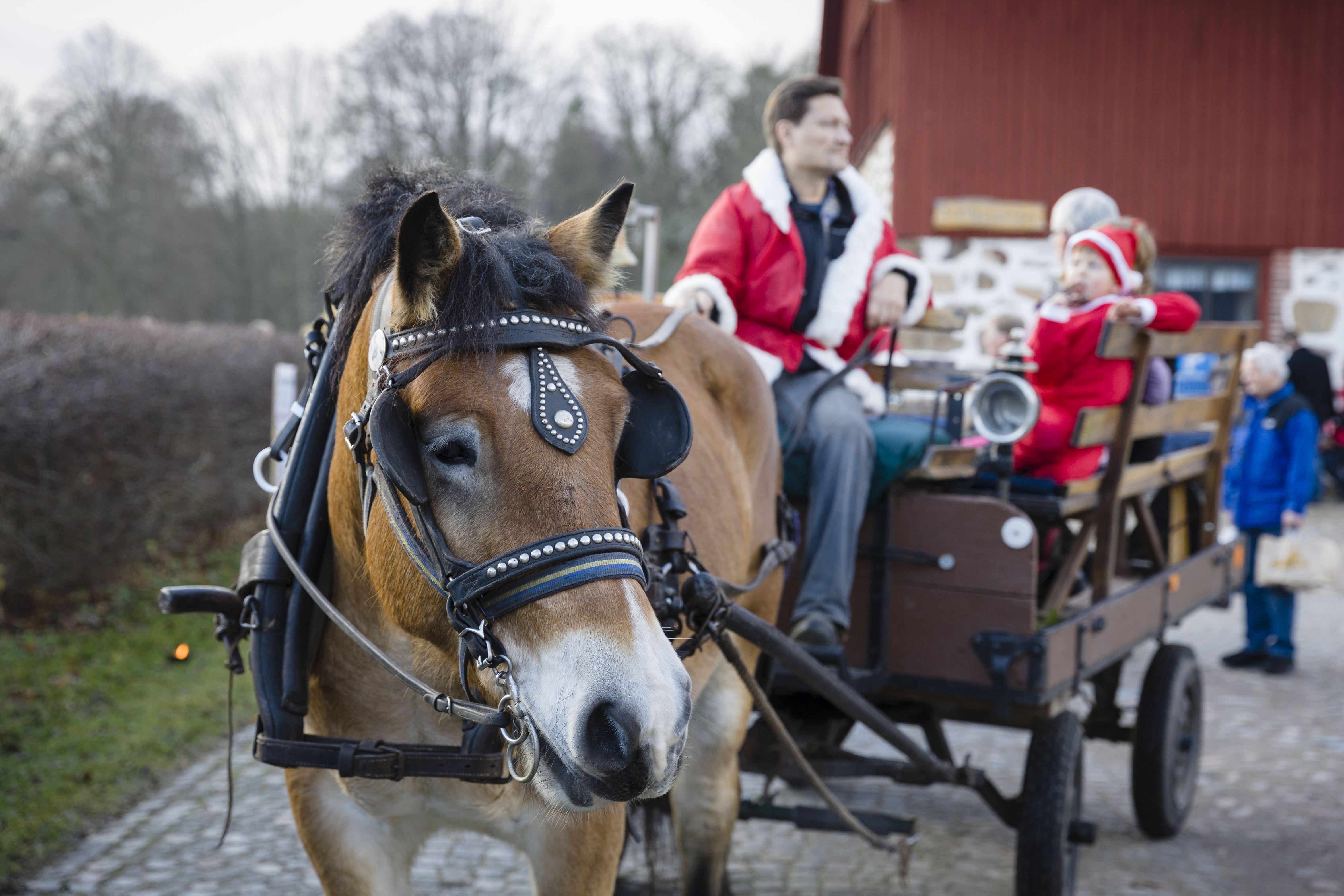 Foto Sven Persson/swelo.se, Skånejul - Christmas Fair at Hässleholmsgården 2016