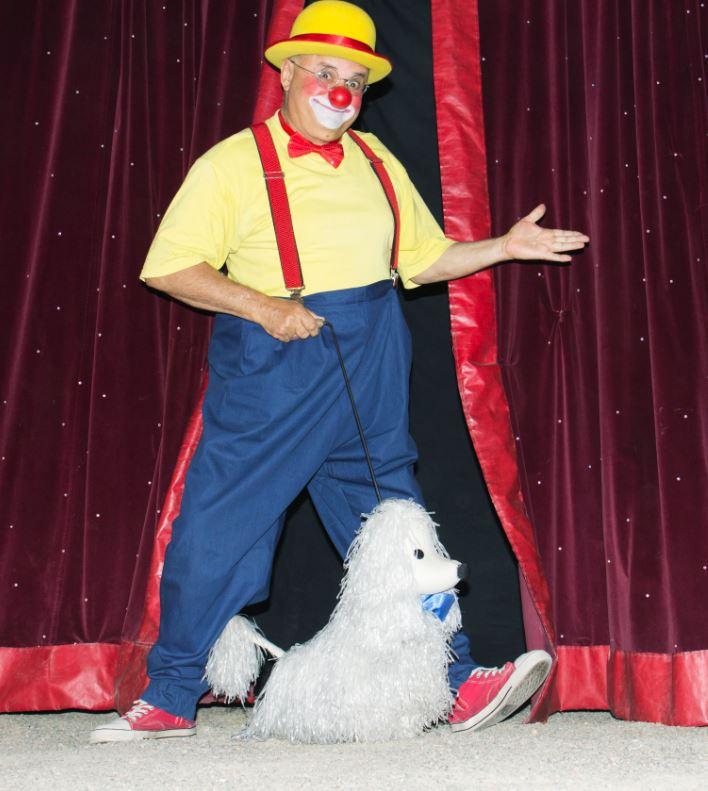 Cirkus festival