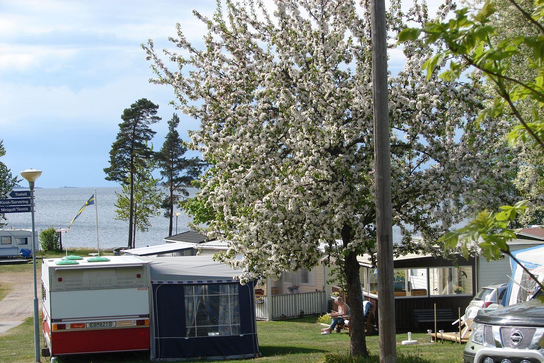 Askeviks Camping & Stugor vid Vänern/Stugor