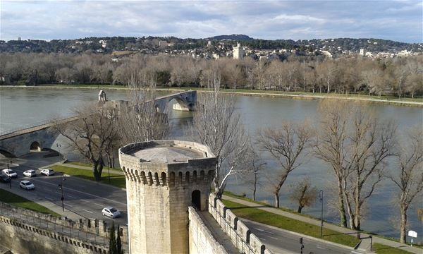 Avignon Walking Tour including Pope's Palace ticket
