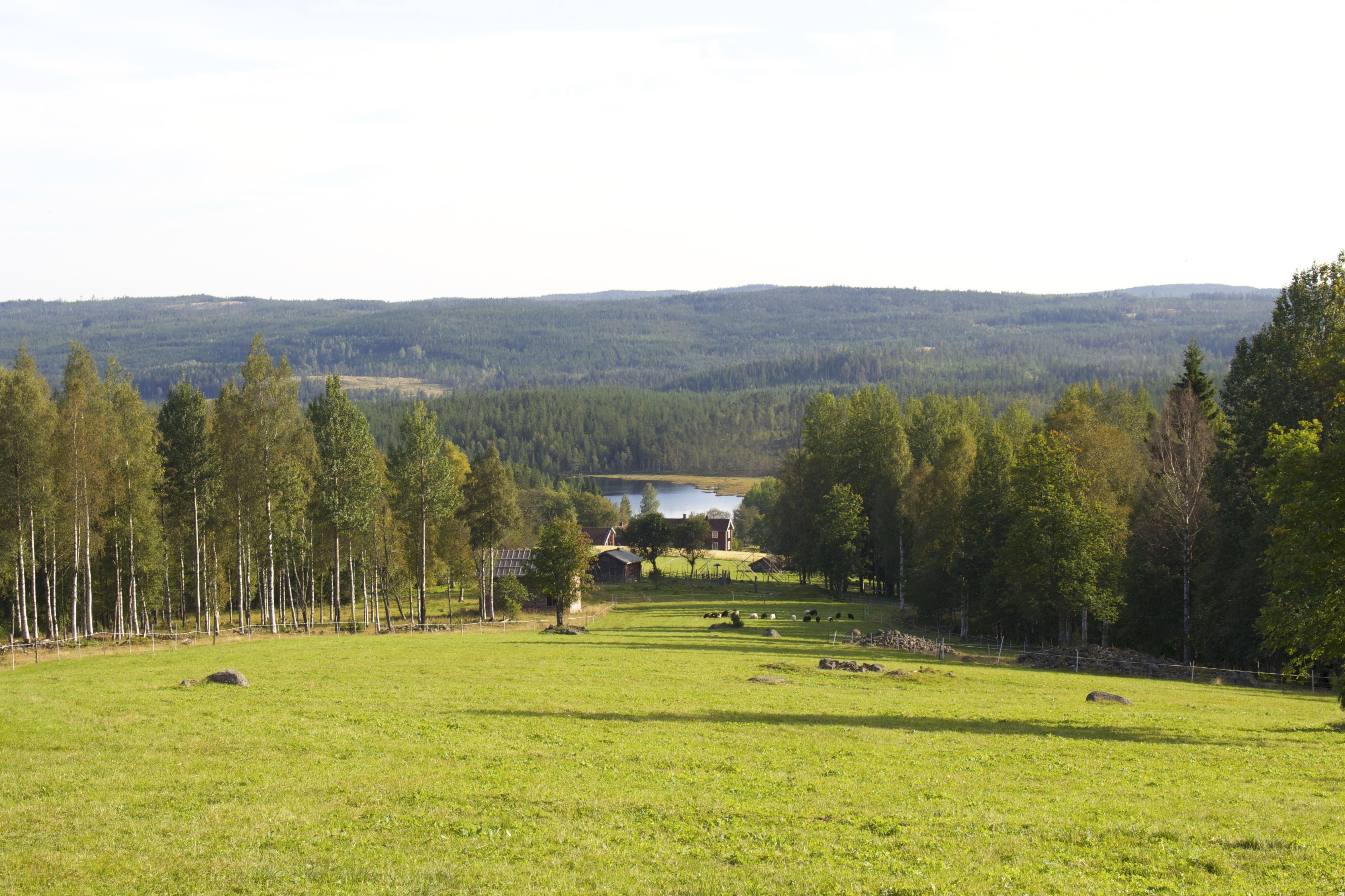 Gårdsbutik på Finngården Rikkenstorp