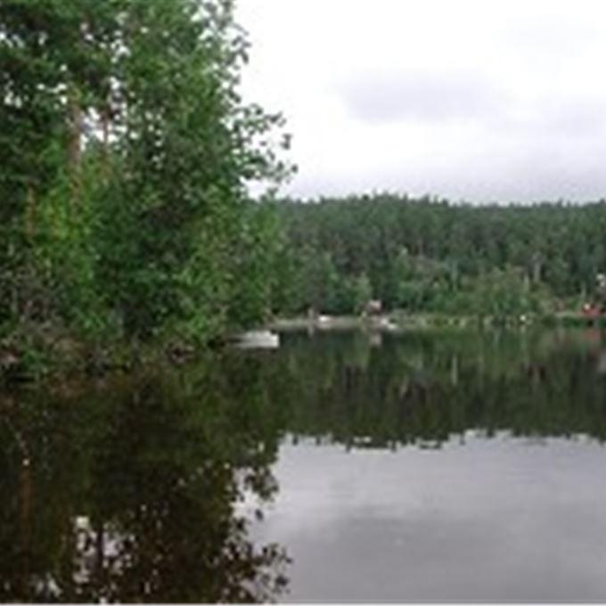 Fiskekort Valsansjöarnas FVO