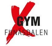 X-gym