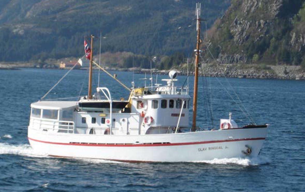 Rundtur rundt Tromsøya med verdens minste cruise båt – Northern Sea Adventure