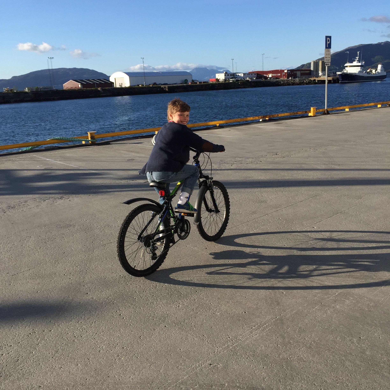 Childrens bike 6-8 years
