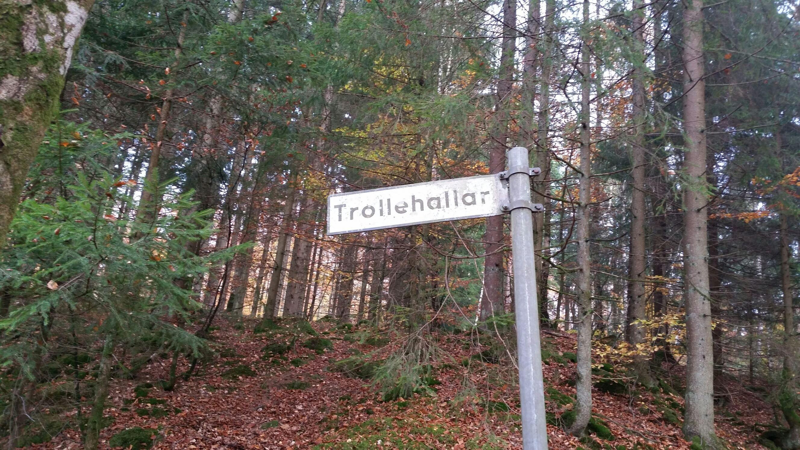 Guidad visning av Trollehallar och Snapphanestallarna