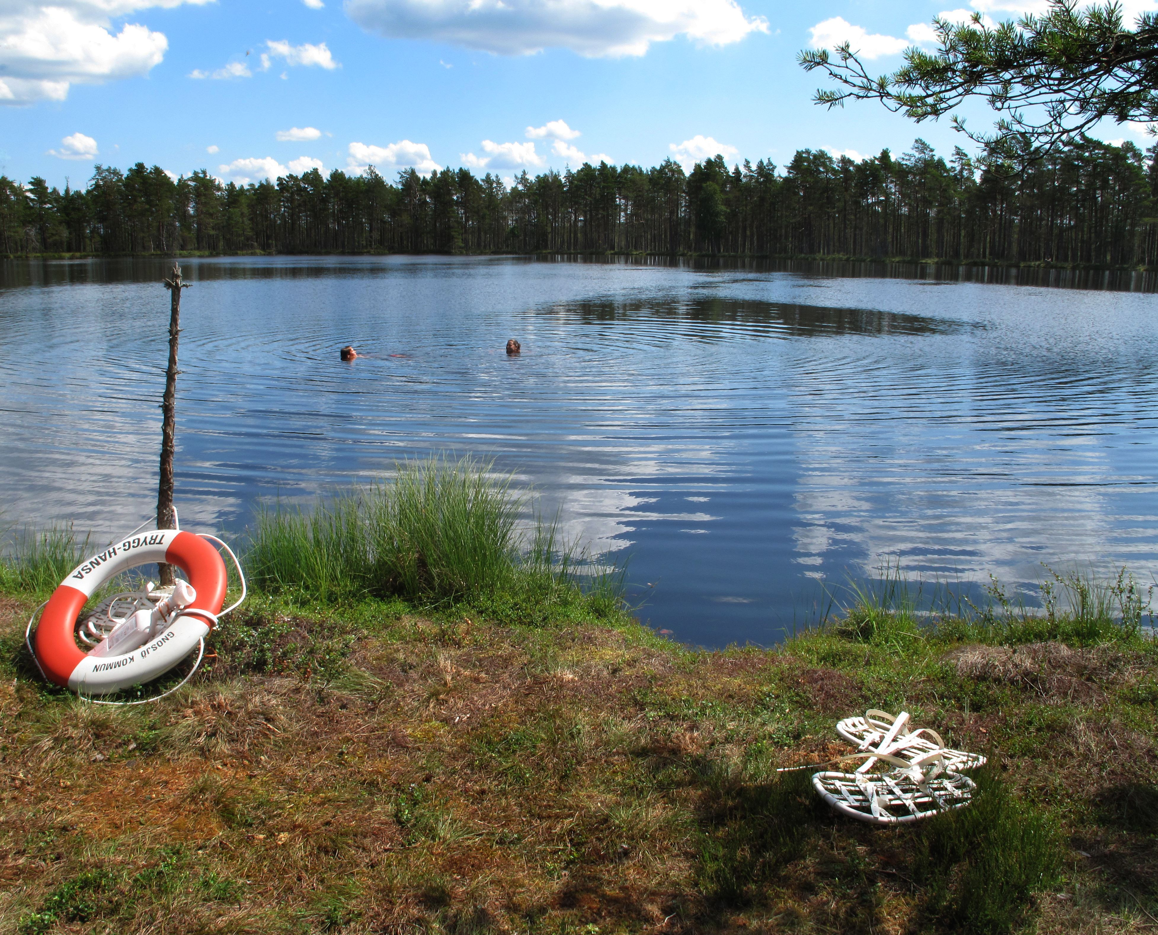 Snowshoe walking in summer with a dip in a bog lake