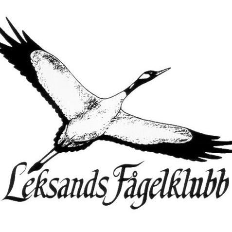 Leksands Fågelklubb -  Hackspettsexkursion