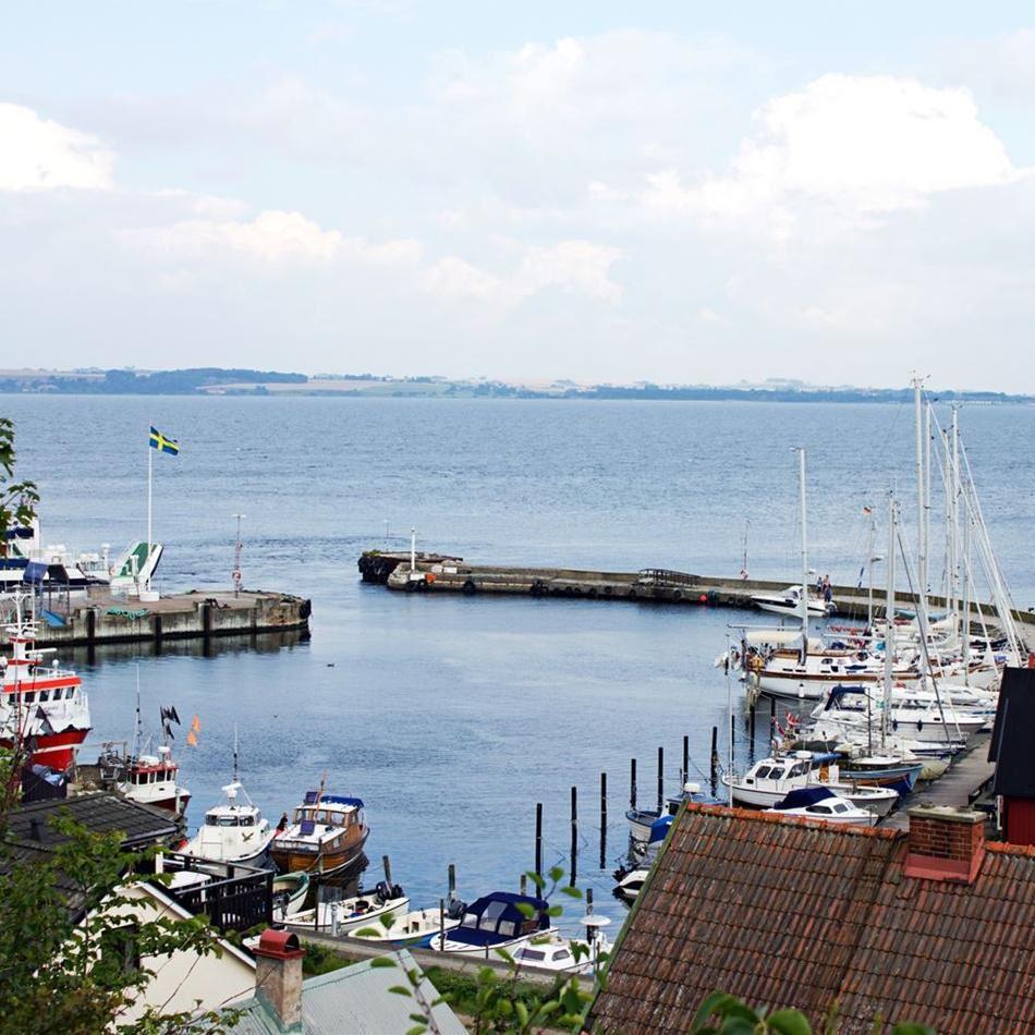 Bäckvikens hamn,  © Bäckvikens hamn, Bäckvikens Guest Marina