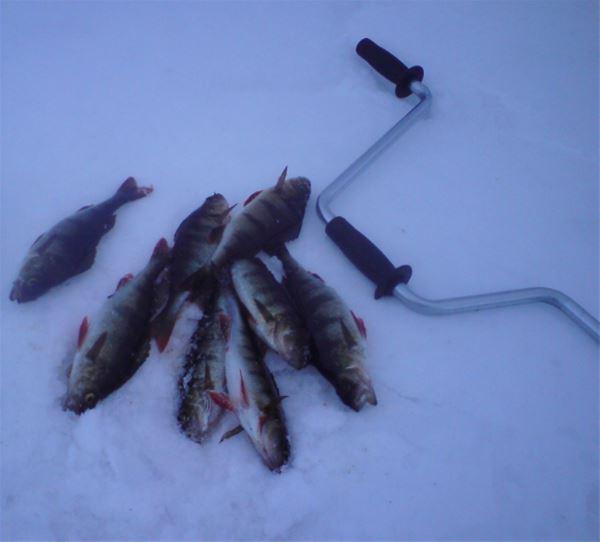 Håckrens fiskecamp