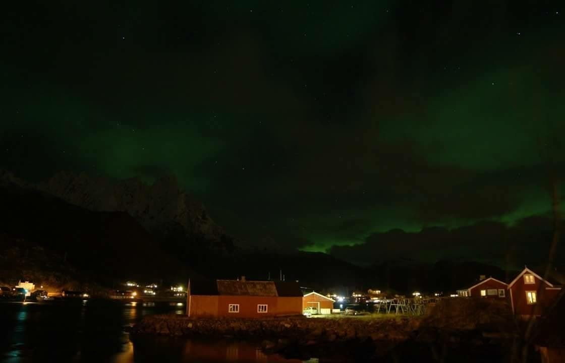 Hemmingodden Lofoten Fishing Lodge - accomodation rorbuer