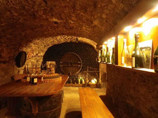 Excursion journée Epernay & vignoble