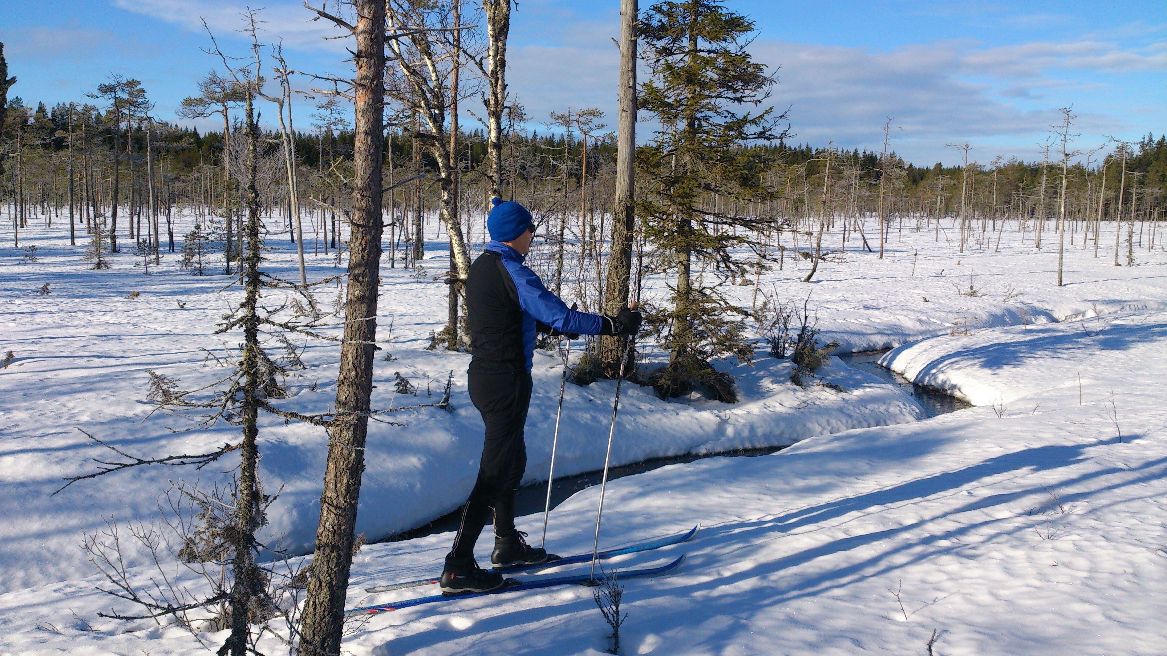 Rakt ut i snön - Familjetur i spännande och vackra omgivningar