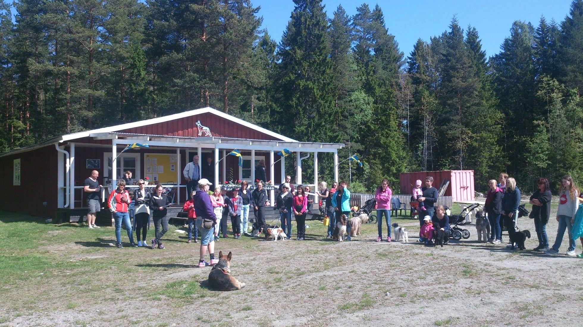 Inofficiell hundutställning på Söderhamns brukshundklubb 22 maj