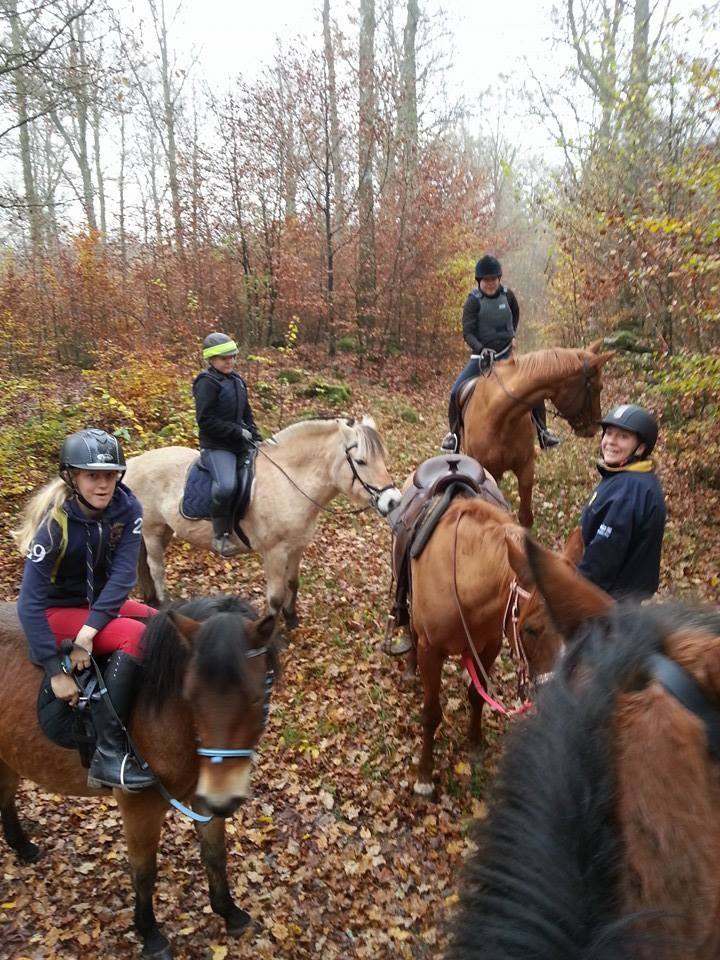 Humlahage Tour riding