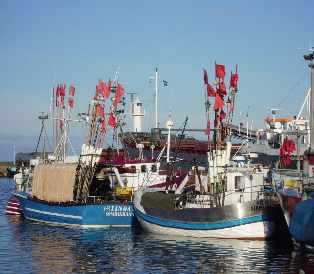 Temakväll om båtbottenfärg och miljö