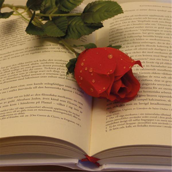 Foto: Susanne Tillom,  © Susanne Tillbom, Vi delar ut böcker på Världsbokdagen