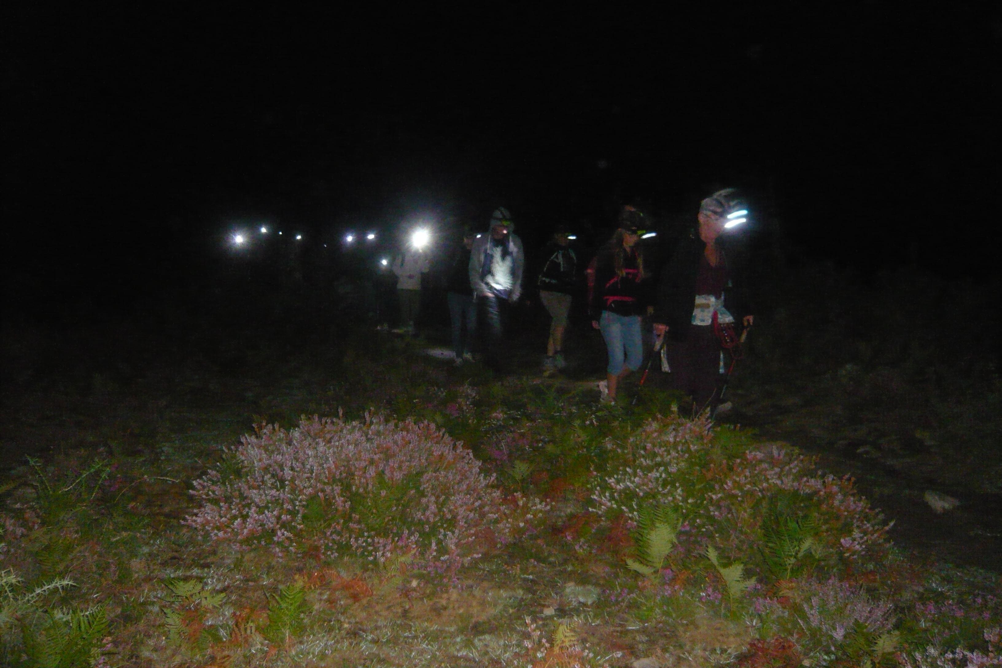 Randonnée nocturne à Ainhoa : LES SOIRÉES DU BERGER