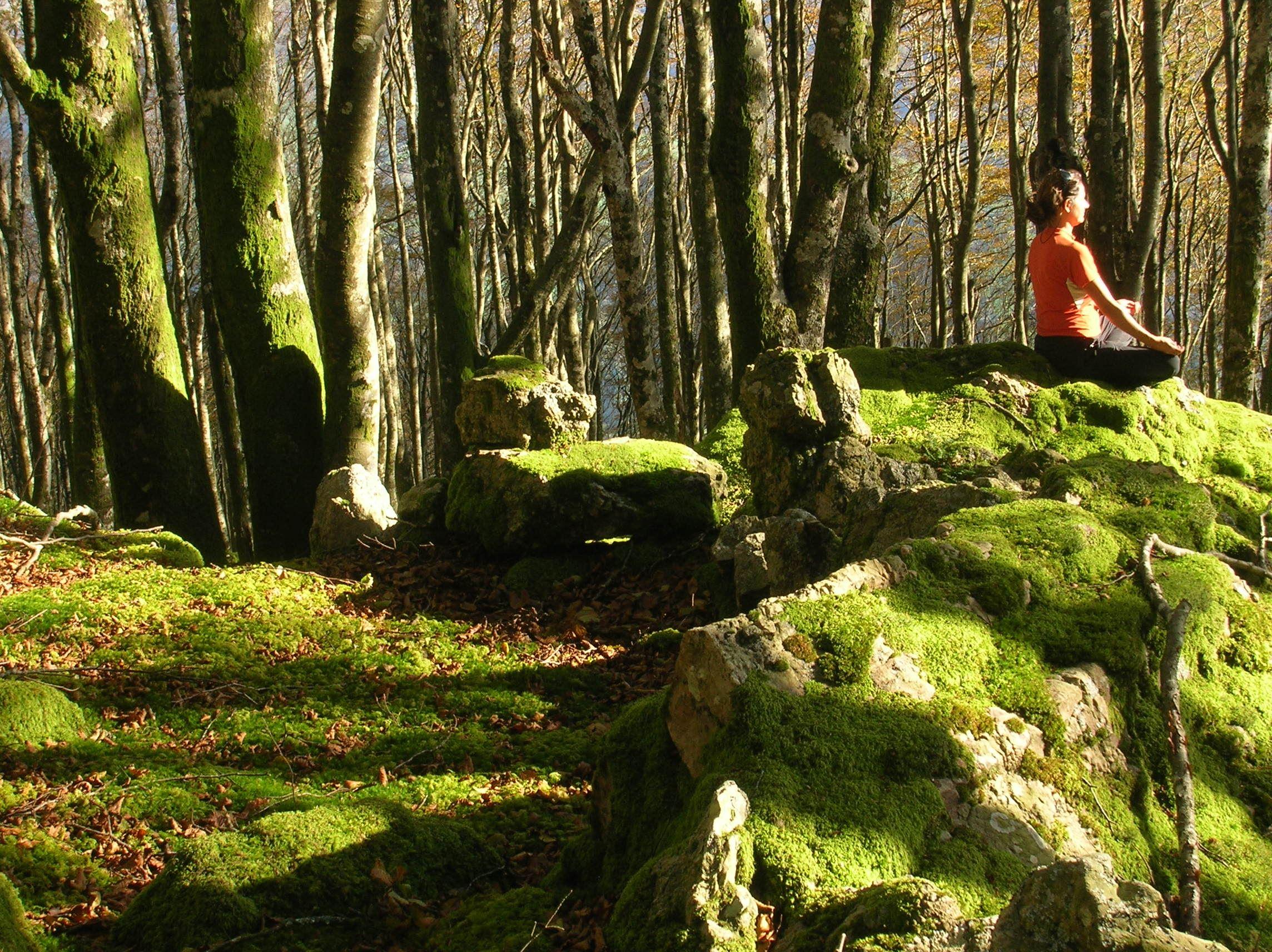 Randonnée Yoga à Ainhoa : MARCHE & ZENITUDE