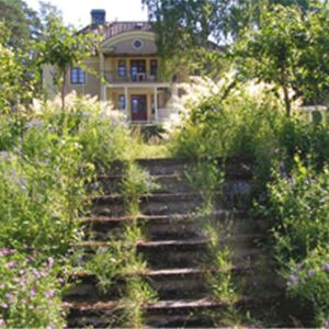 Mohed Campsite & SVIF Hostel, Söderhamn (copy)