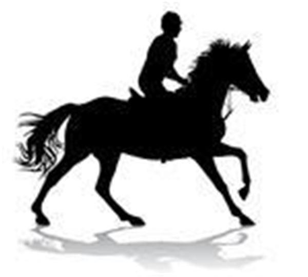 Kom och prova på att rida, åka häst och vagn och gå tipsrunda