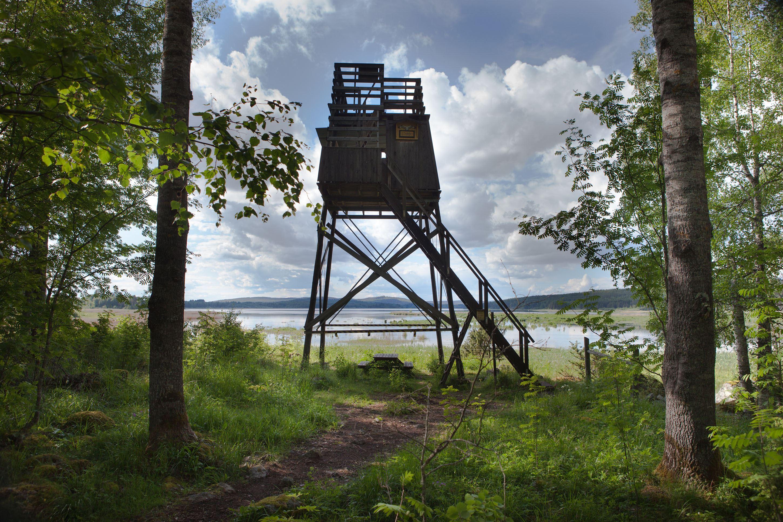 Hans Dahlström,  © Husbyringen, Fågeltorn Flinesjön